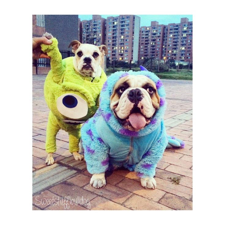 Disfraz Mike Wazowski y Sullivan Monster Inc