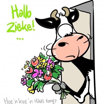 Beterschap; hoe een koe een haas... (© Harold Hugenholtz)