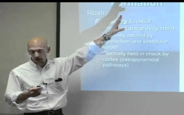 The Gait Guys talk about the Reticular Formation