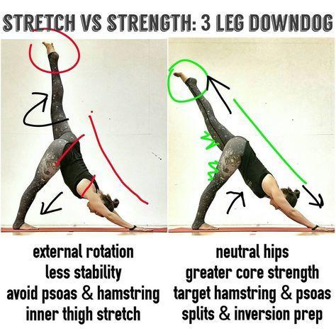pinlinda on correct form  easy yoga workouts yoga