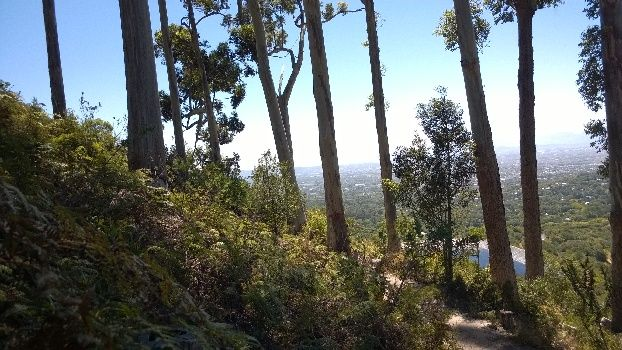 View from up high on the Contour Path, of Kirstenbosch and Irrigation Dam