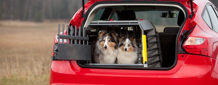 MIM Variocage World's Safest Dog Transport Crate- Compact – Heavy Duty Pet Crates #petsafety #carrides