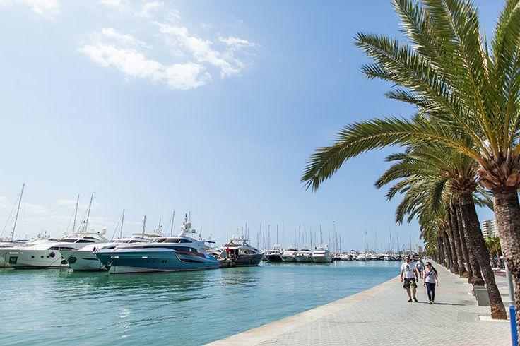Palma de Mallorca. Hamnen i Palma är stor och känd för att ha lyxjakter större än färjor som gäster. Staden är en världsstad med shopping och mängder av mysiga restauranger och gränder.  http://www.sembo.se/d/hotell/spanien/mallorca/palma-de-mallorca