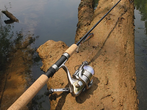 Salmon/Steelhead Rods