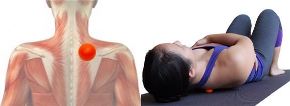 Upper Back Focused Work - Place the small ball between your spine and the inner border of your scapula. Slowly shift your body to explore for areas of tightness. To address a particularly tight area, pause, wrap your arms around yourself in a gentle hug and slowly move your elbows in a circle. Do not place the ball directly on your spinal column. Be sure to address the muscles on both sides of your spine.
