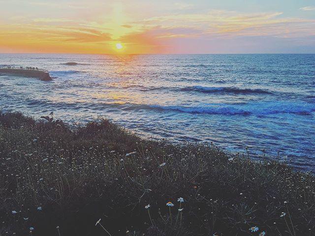 #outdoors #adventure #wild #nature #naturephotography #california #westcoast #beach #ocean #natgeo #travel #sandiego #lajolla #spring #sunset #sky #waves #wanderlust #lajollalocals #sandiegoconnection #sdlocals - posted by Alyssa Cribbs  https://www.instagram.com/alyssaforever. See more post on La Jolla at http://LaJollaLocals.com