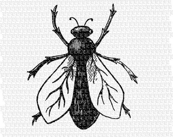 Retro Printable Letter Size Clip Art Insects by luminariumgraphics, $2.20