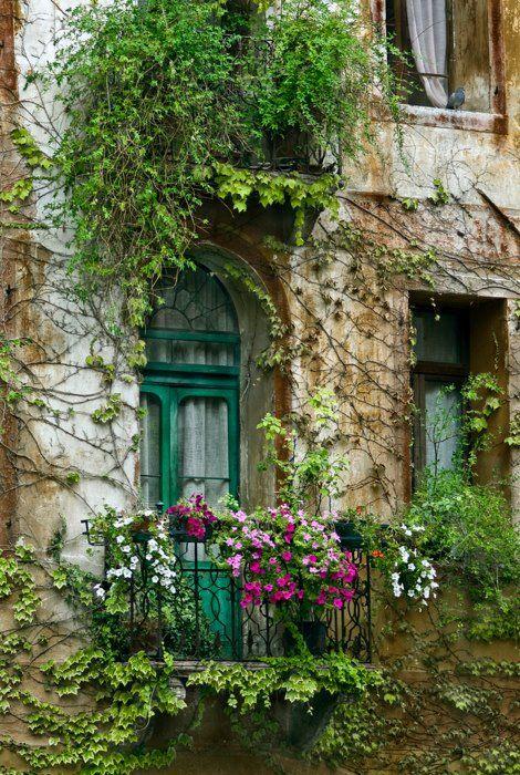 GAAYA arte e decoração: Imagens que inspiram  #janela #window