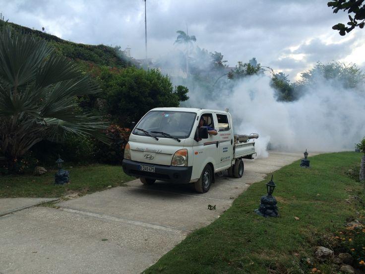 #Dengue, zika, chikungunya y cólera amenazan Holguín - Cubanet: Cubanet Dengue, zika, chikungunya y cólera amenazan Holguín Cubanet…
