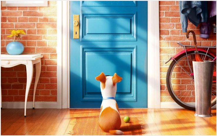 The Secret Life Of Pets Movie Wallpaper | the secret life of pets movie wallpaper 1080p, the secret life of pets movie wallpaper desktop, the secret life of pets movie wallpaper hd, the secret life of pets movie wallpaper iphone