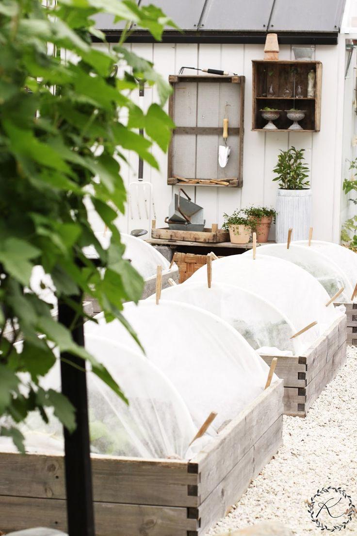 2428 best Greenhouses Gardens Decks images on Pinterest ...
