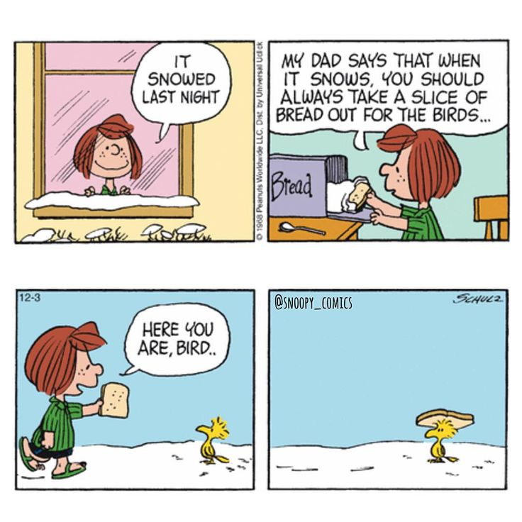 """Remember to leave out bread for birds  #snoopy #comics #cartoon #snoopycomics #peppermintpatty #woodstock"""
