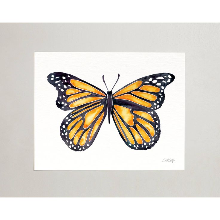 """PRODUCTS :: LIVING AND DESIGN :: Accessories and Decorations :: Prints :: Butterfly – Signed Watercolor Painting Art Print by CatCoq. Artwork Printed on 8.5""""x11"""" High-Quality Archival Epson Paper. Insect wall art."""