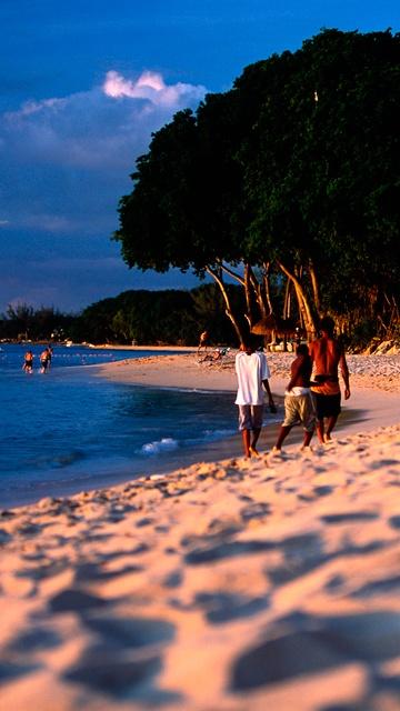 Beach near The House, St. James, Barbados