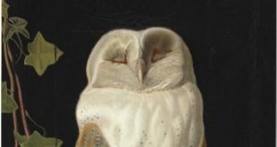 Na ostatniej aukcji brytyjskiego impresjonizmu i sztuki wiktoriańskiej w Londynie obroty Christie's wyniosły 6,3 miliona funtów. Uwagę przykuwa jeden z najdroższych obrazów sprzedanych na aukcji – przedstawienie białej sowy Williama Jamesa Webbe'a, który osiągnął cenę ponad dziesięciokrotnie wyższą od szacowanej.