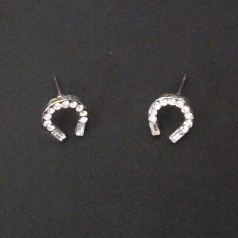 Horse Shoe Earrings from Wild Hooves http://www.equinetrader.co.nz/directory/wild-hooves-gifts/