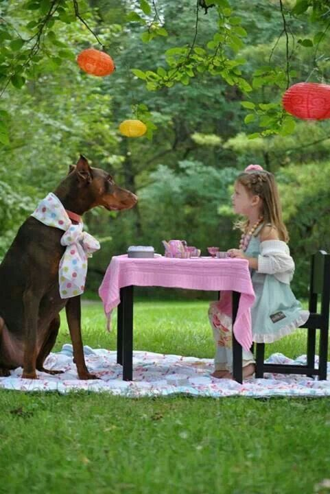 Girl and her dobie #pet_child