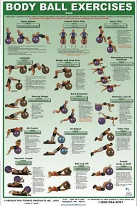 Swiss Ball A must have for home workout. There's tons of You Tube videos but check out the diagram for the basics You'll be amazed at the results!