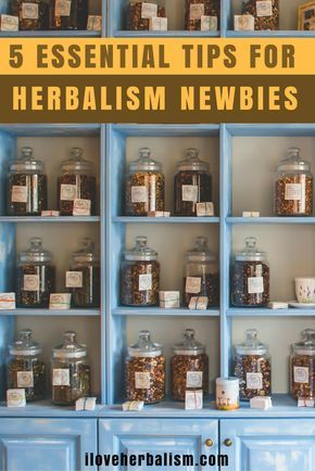 5 ESSENTIAL TIPS FOR THE BUDDING HERBALIST by Nina Nelson. She comes from a long line of natural healers and her dad has been running an organic herb farm since she was 5 years old. In this article, she will share what she has learnt along the way.