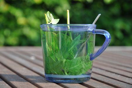 Zelf kruiden kweken: - Stekken of scheuren: zodra de plant blad heeft in het voorjaar - Locatie: zonnig / halfschaduw - Regelmatig water geven - Oogsten: het hele seizoen kun je steeltjes knippen