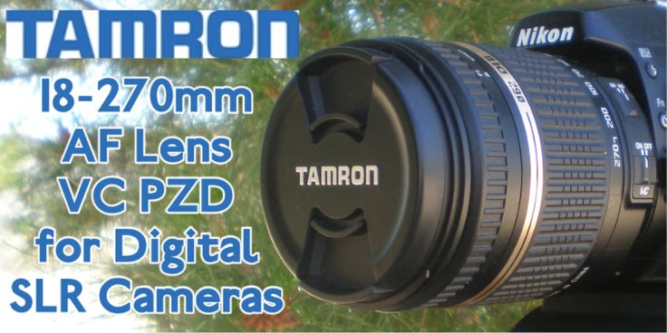 d day zoom review