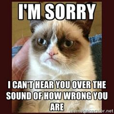 YES! ...You Sit Wayyyy Over There, In Your Wrong-ness, & Be Wrong! ~Grumpy Cat - Mean memes...