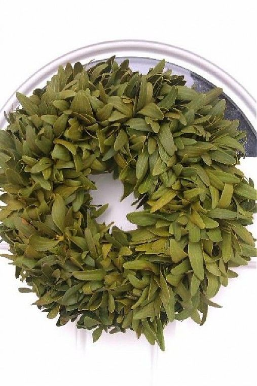 mistletoe wreath