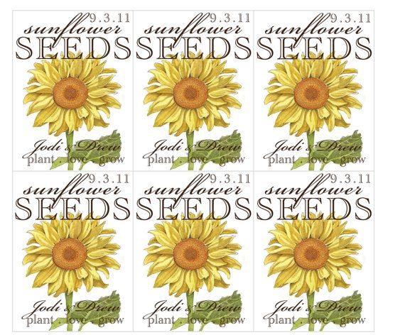 Rustic Sunflower Wedding Invitations