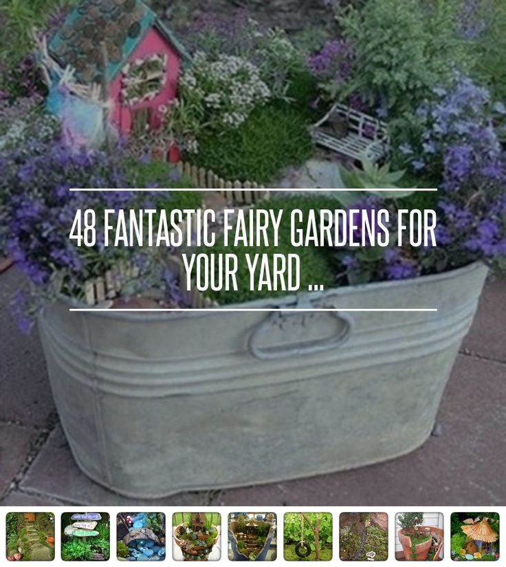 48 Fairy Garden Ideas http://gardening.allwomenstalk.com/fantastic-fairy-gardens-for-your-yard