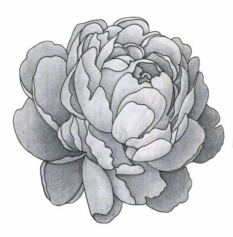 May be the perfect shoulder cap tattoo :)