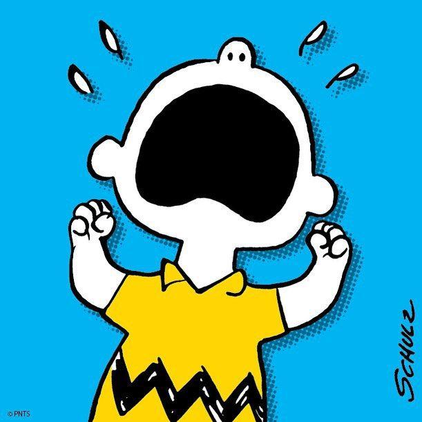 Charlie Brown S Dog Friend