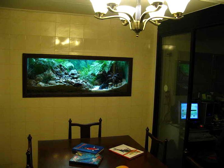 17 best images about strawbale house ideas on pinterest for Fish tank built into wall
