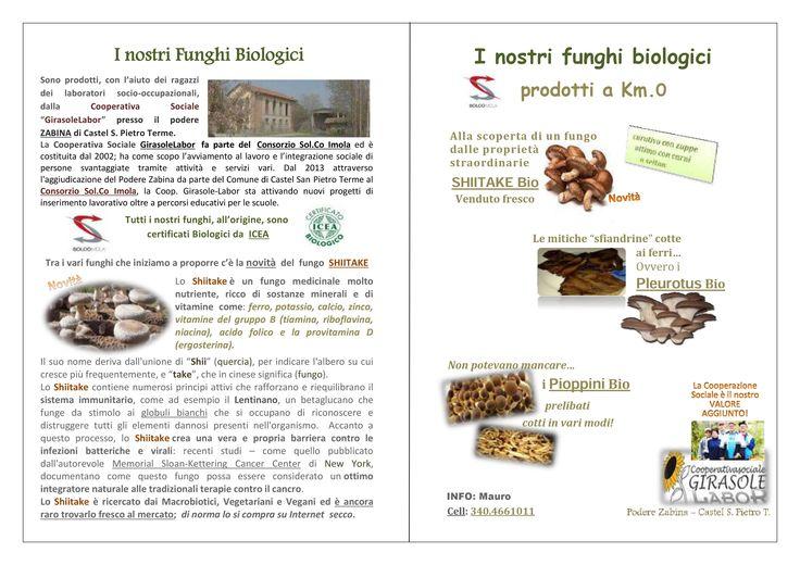 La novità della coltivazione è il fungo Shiitake #ciboprossimo