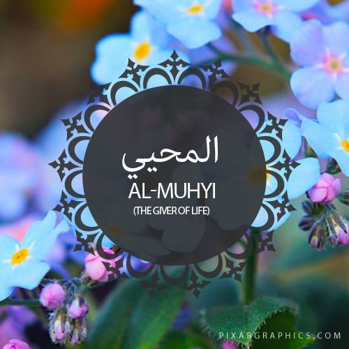 Al-Muhyi,The Giver of Life,Islam,Muslim,99 Names