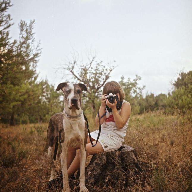 excursión canina | lamosquita.net