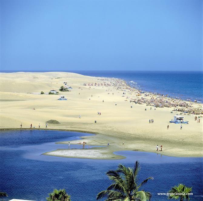 Charca y Playa de #Maspalomas #GranCanaria #IslasCanarias