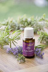 Pin It 2 Win It! Repin this and you will may win a 15 ml bottle of Young Living Lavender Essential Oil! Would love to hear how you would use it! Contest ends Monday, February 27th, 9pm CST! Good luck and have fun!