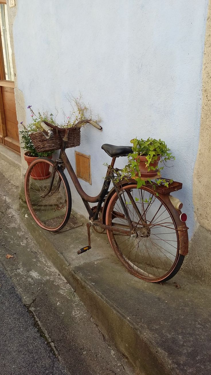 beautiful Repurposed Bike Planter  #Bike #Planter #Tree While on vacation in France, I noticed this old rusty bike repurposed as a planter in the streets of a medieval village.    ...