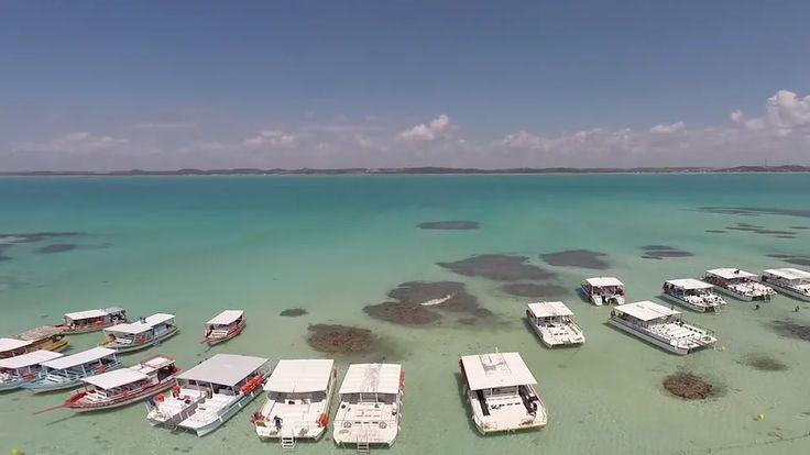 Viajando para Maragogi em Alagoas on Vimeo
