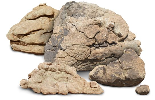 lots-o-rocks.png 544×351 pixels