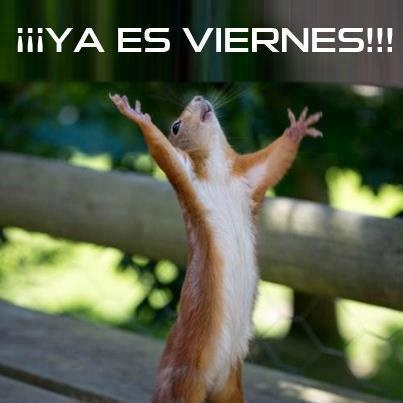 """¡Hoy es viernes, yahoo yahoo!"" If you know who says this you're awesome"