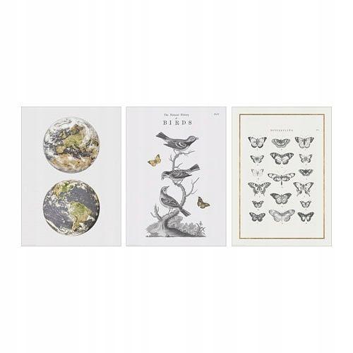 Ikea Bild Plakat Ptaki 3szt 50x70 7719450019 Oficjalne