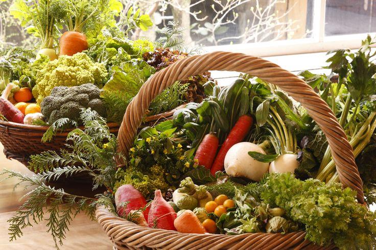 """長楽館Italian Restaurant Coral新ランチメニュー""""MERCATO""""開始12月7日~ 12月7日(木)よりイタリアンレストランコーラルにて、新たにランチメニュー """"MERCATO(メルカート)""""が始まります。 """"MERCATO""""とは市場。メルカートランチでは、市場のように並ぶ、 シェフ厳選の新鮮な野菜をブッフェ形式でお召し上がり頂きます。  メルカートランチは「スープ・前菜・パスタ・デザートセット」 の¥3,000と、さらにメインディッシュのついた¥3,800の2種類。 コーラルの""""市場""""を是非お楽しみください。  CHOURAKUKAN ITALIAN CORAL [メルカートランチ] ¥3,000・¥3,800(メインディッシュ付き)  ※ Ⅰ部:11:30~13:00/Ⅱ部:13:30~15:00(2部制・90分)  ※ 金額はいずれも税・サ料別 for your information and reservation  Tel.075-561-0001  ♪ We are pleased to announce a new menu at our…"""