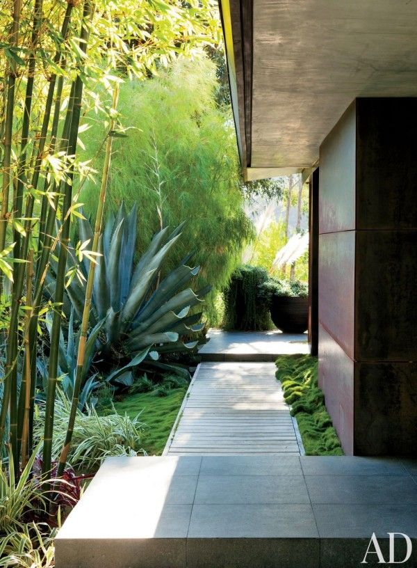 #Modern Asian-inspired #walkway and #landscape design