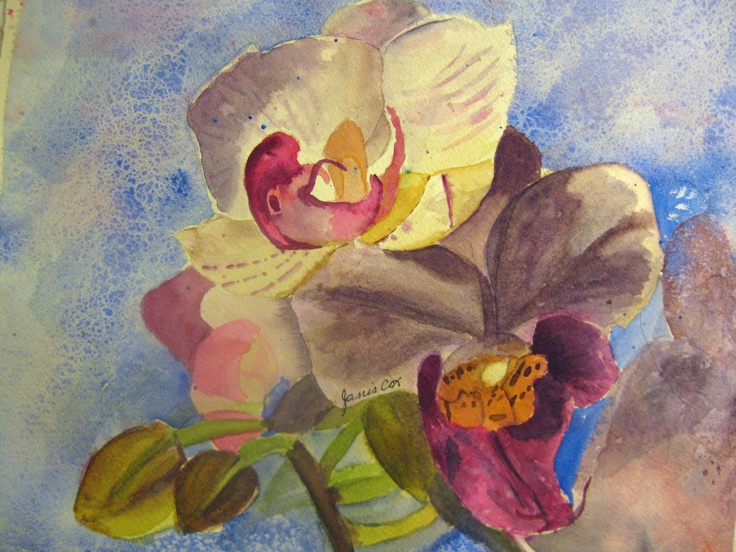 An orchid painted by Janis Cox from a picture from http://williamsdavid.net/ Can be found at www.janiscox.com.