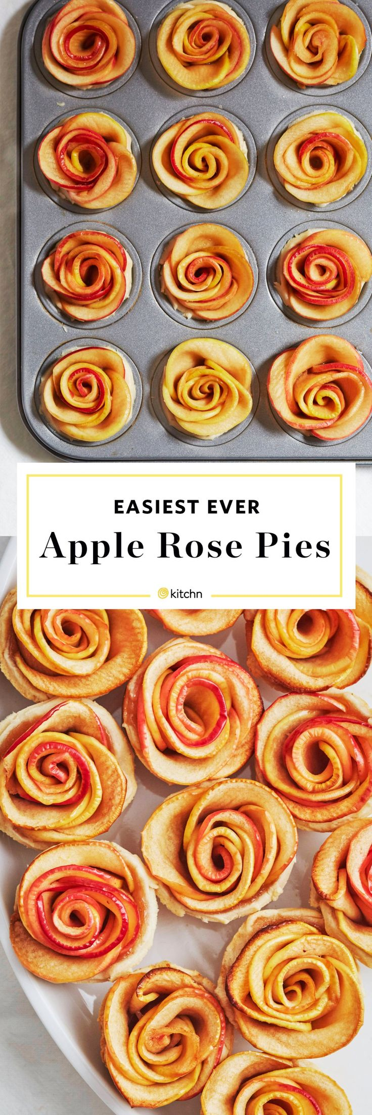 Easy Apple Rose Pies Recipe. Make These BEAUTIFUL edible roses for someone you love. Perfect for Galentines or Valentine's Day! Use Puff pastry, homemade pie crust, or store bought pie crust for these beautiful, EASY individual mini desserts.