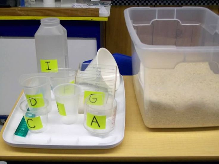Here's an activity where students use rice to compare the capacities of different containers.