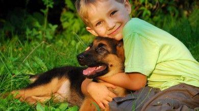 Влияние домашних животных на психическое и физическое здоровье