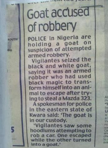 Funny Newspaper Headlines: Goat Accused of Robbery in Nigeria. Real funny newspaper headlines.