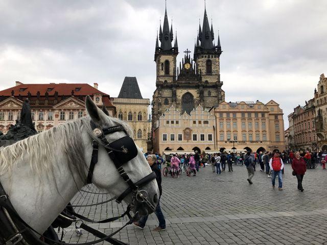 07 de maio de 2017 Voltamos ao centro histórico de Praga, nesse segundo dia na cidade. A primeira visita que fizemos foi à Igreja de São Tiago, na periferia do centro histórico. A igreja atual em e…